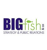 skp-bigfish-logo-bfco-1.jpg