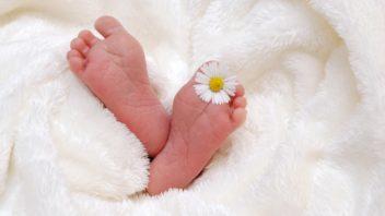 baby-718146_1280-352x198.jpg