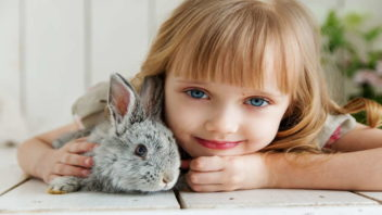 girl-lying-on-white-surface-petting-gray-rabbit-1462634-352x198.jpg
