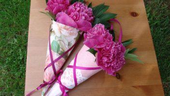 ozdobne_kornouty_na_kvetiny-hlvani-352x198.jpg
