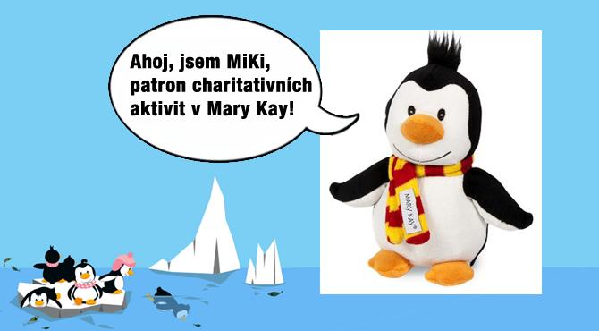 soutezmary_key.jpg