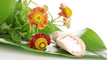 homeopatie_homeopatika_bylinky_profimedia-0151807487_2-352x198.jpg
