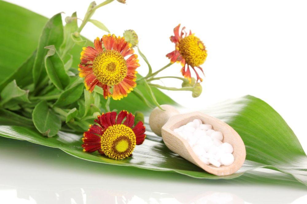 homeopatie_homeopatika_bylinky_profimedia-0151807487_2.jpg