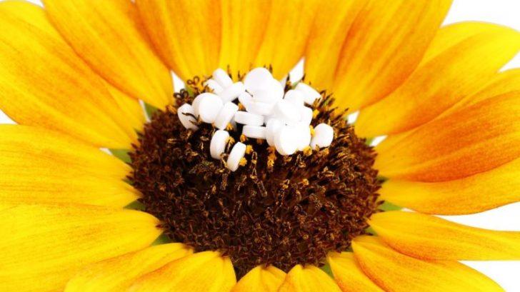 homeopatie_homeopatika_profimedia-0151807144-728x409.jpg
