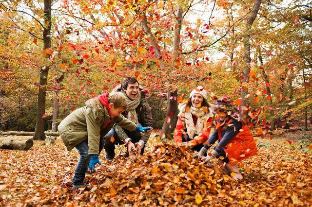 profimedia-podzim.jpg
